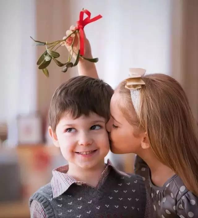 圣诞节为什么要挂檞寄生?