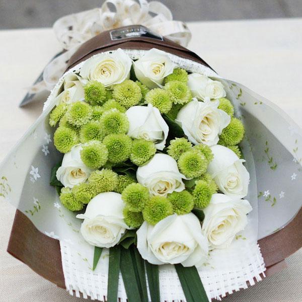 雏菊的花语是什么?