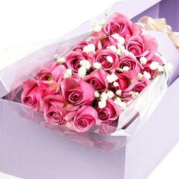 紫玫瑰寓意,紫玫瑰的花语是什么?