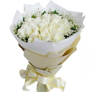 19朵玫瑰花的含义,19不同花色朵玫瑰花的花语!