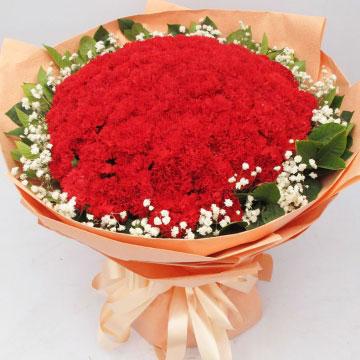 紅色康乃馨花語的花語是什么?