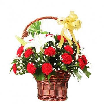 红色康乃馨花语是什么?