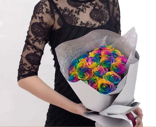 七彩玫瑰的花语是什么?