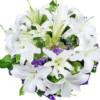 朔州市右玉縣花店送花,右玉縣哪里有鮮花店?