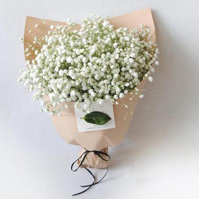 安徽省安庆市宜秀区花店-网上鲜花订购电话