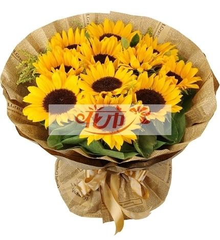 探望病人送什么花?