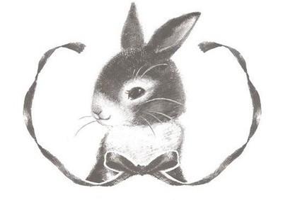 小兔子有颗玻璃心