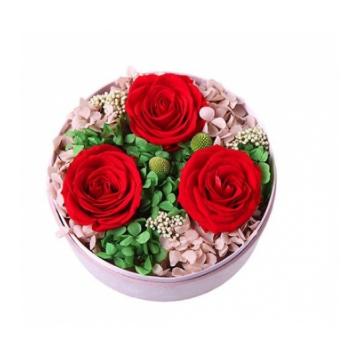 三朵玫瑰代表什么?