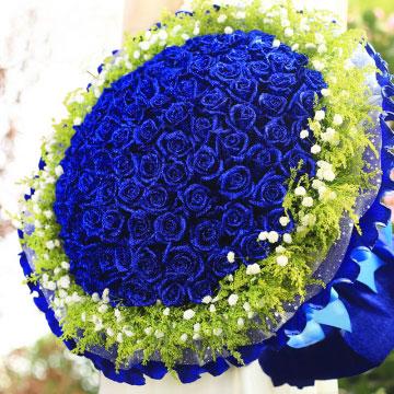 蓝色玫瑰代表什么,蓝色玫瑰代表什么寓意?
