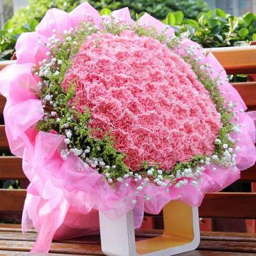 66朵粉康乃馨