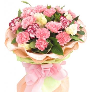 白色康乃馨的花语是什么?
