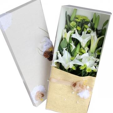 矢車菊的花語是什么?
