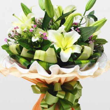 百合花的象征意义是什么?