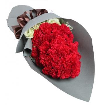 红色康乃馨花语是什么,红色康乃馨象征了什么?