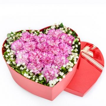 康乃馨代表什么意思,康乃馨的花语是什么?