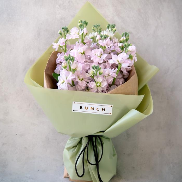 紫罗兰的花语是什么