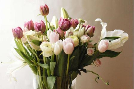 情人节收到玫瑰花应该怎样保鲜