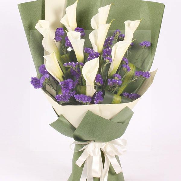 白色马蹄莲的花语是什么图片