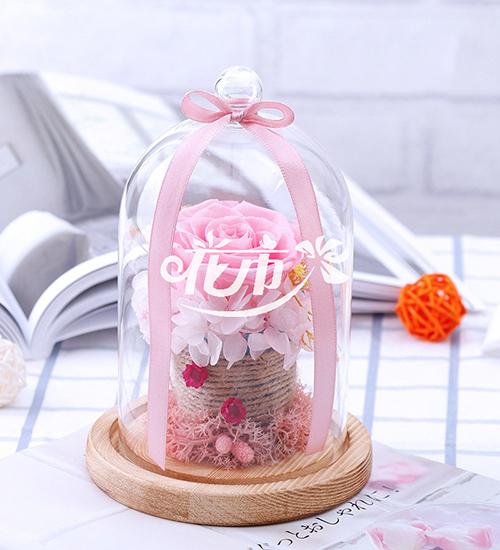 春节适合买什么花、送什么花?