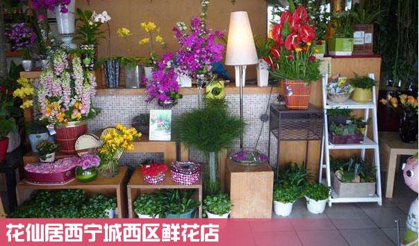 西宁城西区鲜花店