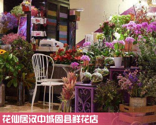城固县鲜花店