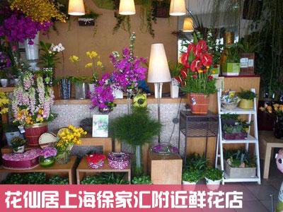 上海徐家汇鲜花店