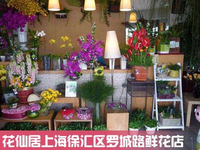 徐汇区罗城路鲜花店