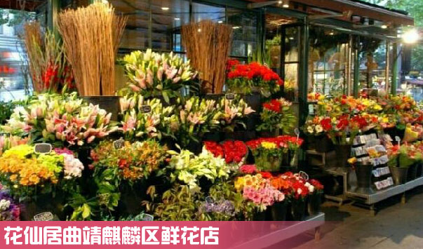 曲靖麒麟区鲜花店