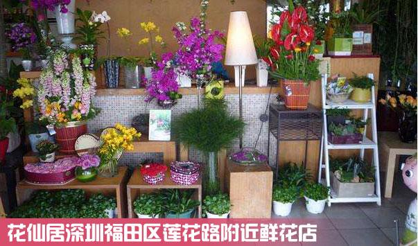 福田区莲花路鲜花店