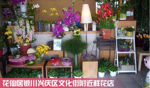 兴庆区文化街鲜花店