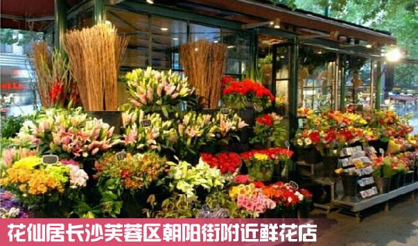 长沙芙蓉区朝阳街鲜花店