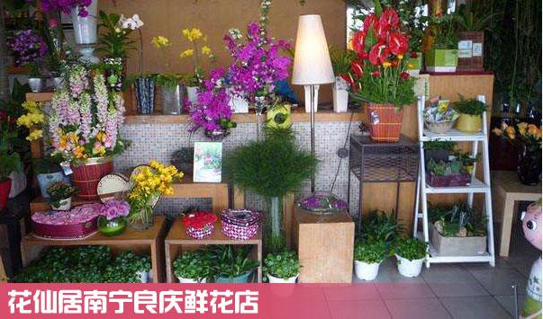 南宁良庆鲜花店