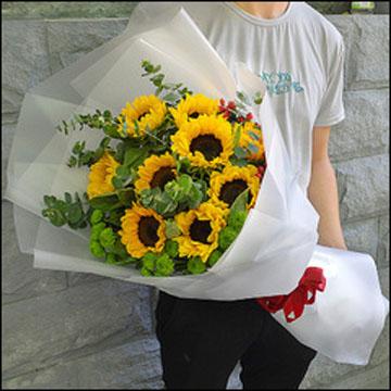 焦作山阳区朝阳小区花店