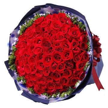 玫瑰花朵数代表的含义图片