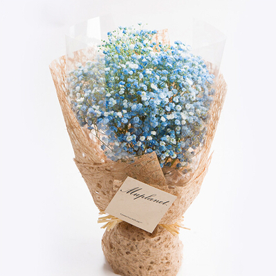 鲜花速递_蓝色星空