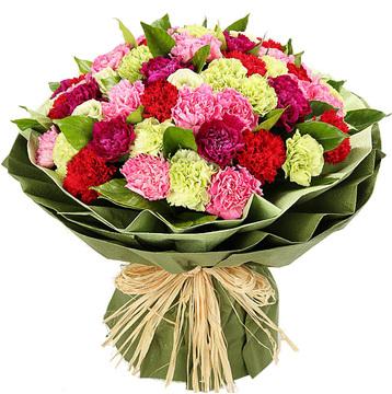 温情阳光 (绿色、粉色、红色、紫色康乃馨 生日 朋友 父母 教师)