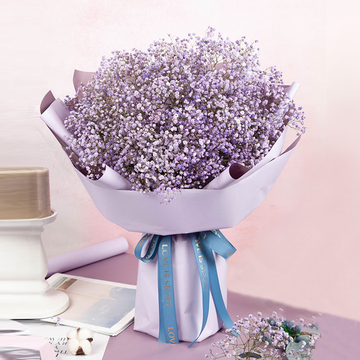 鲜花速递_紫色星晴